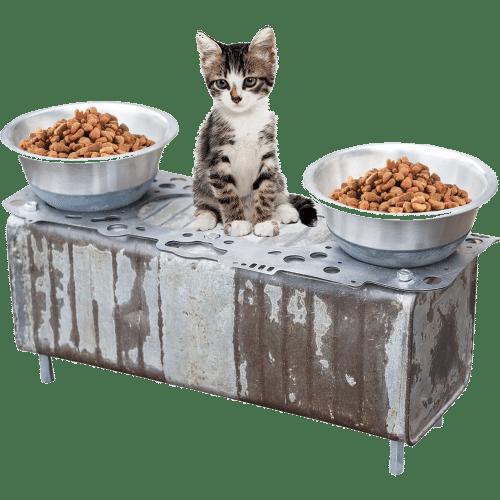 Gamelle chat originale, Joint de Culasse fixé sur Jerican de 1940