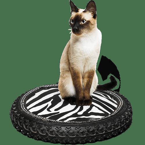 Coussin de luxe style deco garage pour chat