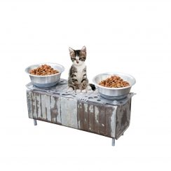 Atelier du Loft Daniela DAUDE artiste Création artistique Accessoires animaux avec pièces détachées d'auto Gamelle chat originale pour passionné de voiture