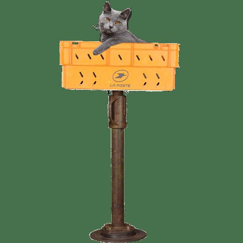 Arbre à chat design PTT pas comme les autres