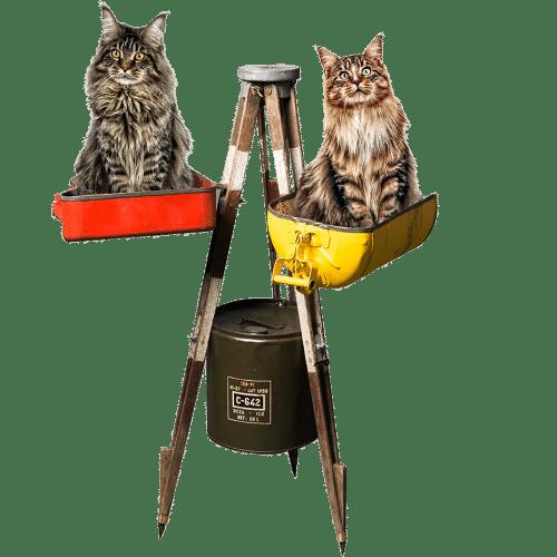 Arbre chat luxe Trépied théodolite 30s