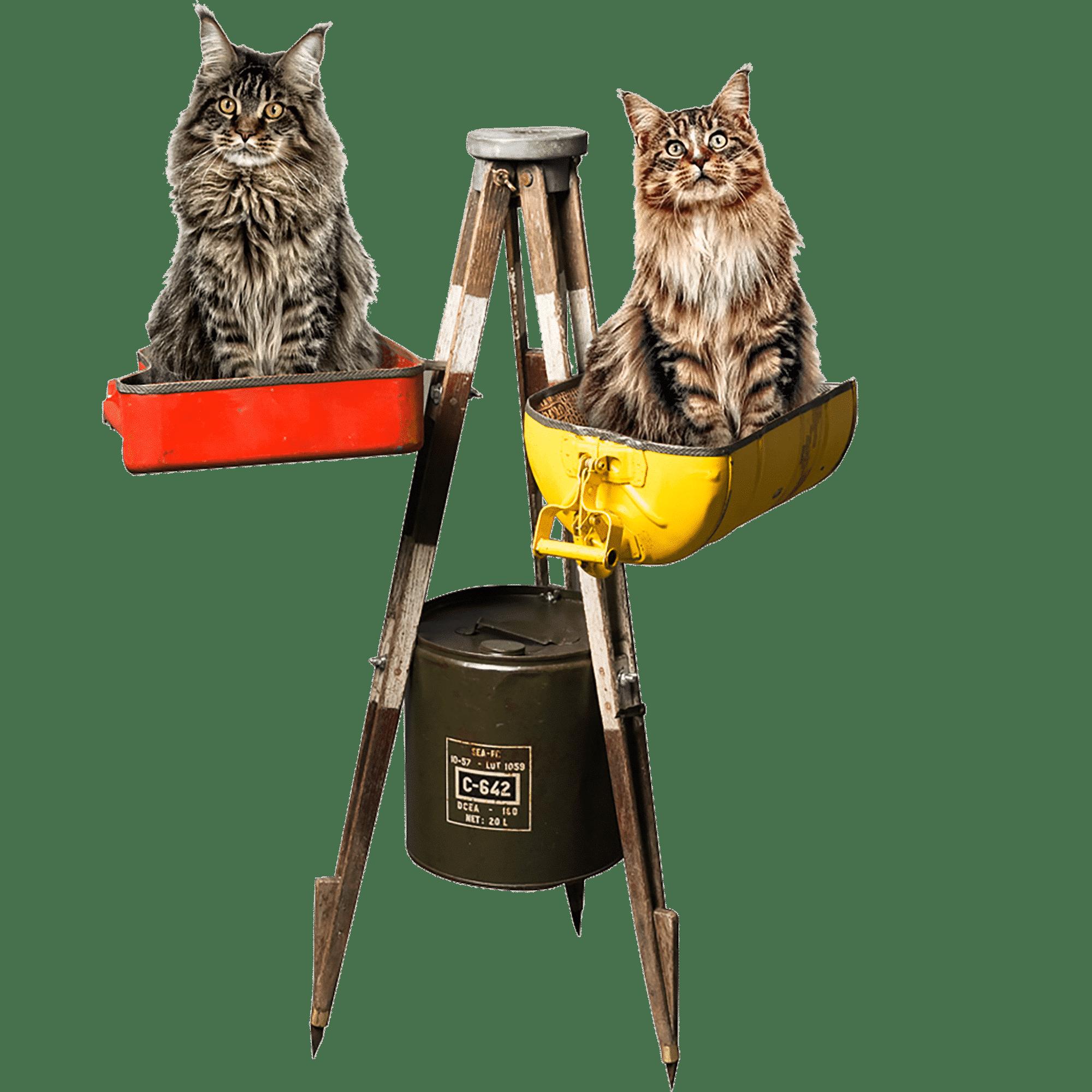 chat luxe accessoires pour animaux banquette pour chien haut de gamme. Black Bedroom Furniture Sets. Home Design Ideas