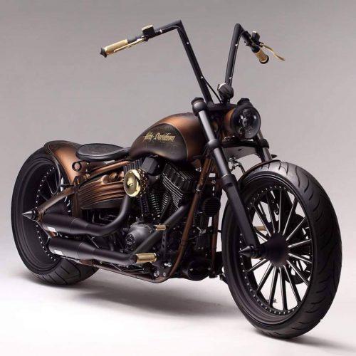 Bourse Harley Davidson SEPPOIS LE BAS 1er dimanche octobre |Agenda événements auto moto de Daniela DAUDE artiste ART automobile et moto